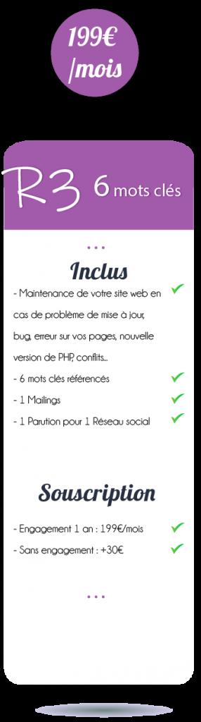 referencement-avec-options-facebook-reseaux-sociaux-mailing-newsletter-maintenance-site-web
